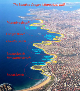 bondi-to-coogee-map11